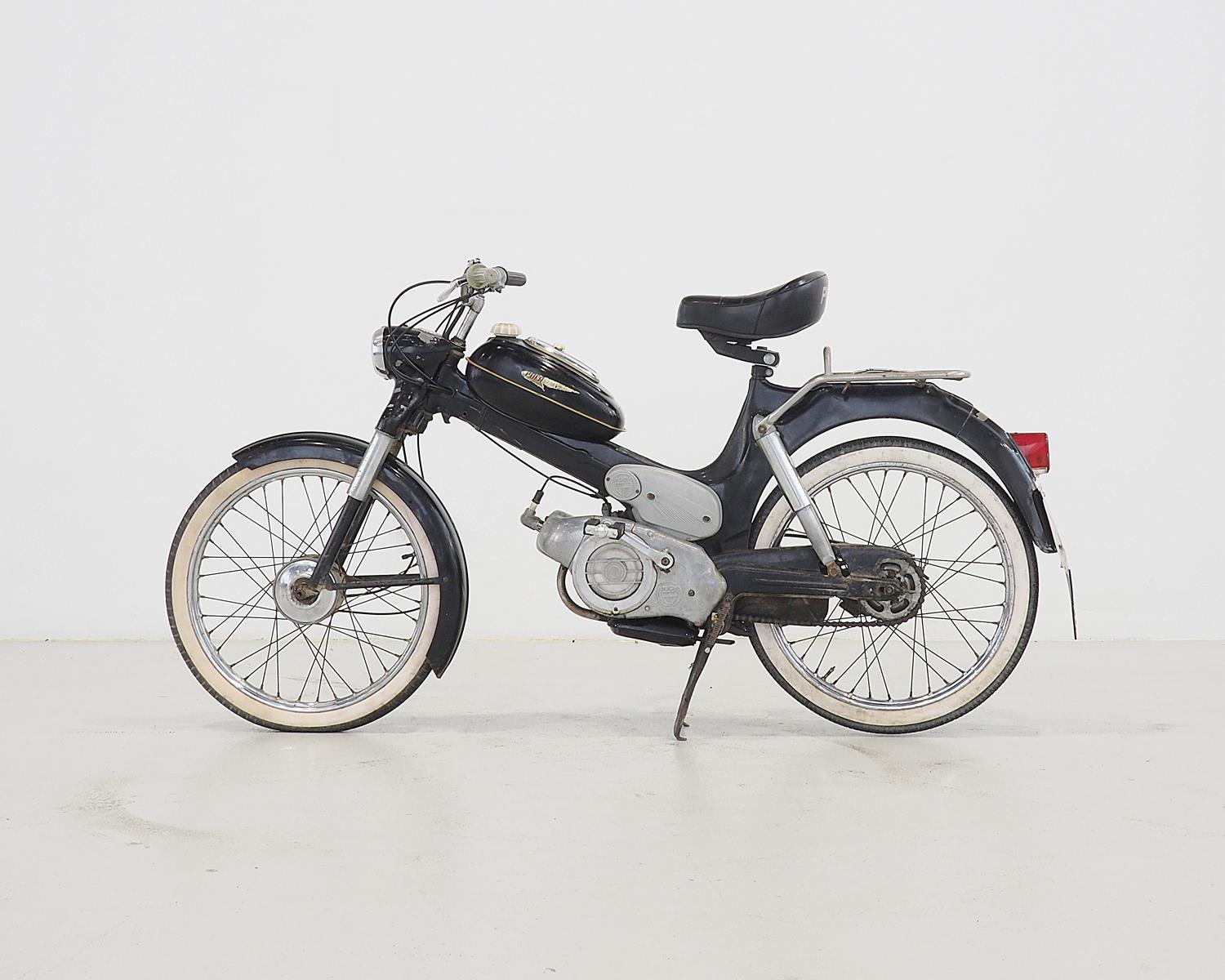 1977 Puch MV 50 (ohne Limit) - Classic Cars 2019/06/15